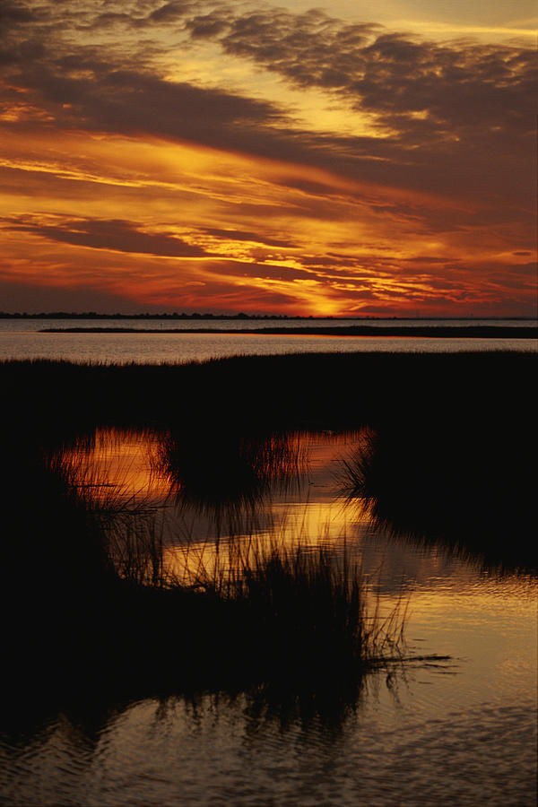 This image has an empty alt attribute; its file name is sunset-over-a-salt-marsh-with-cordgrass-raymond-gehman.jpg